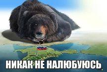 Крым- это Россия