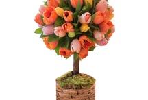 Composition florale topiaire