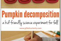 Decomposition in Action / Bringing real science into the classroom and learning how decomposers work.