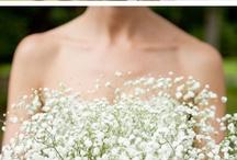 wedding dresses / Lets find something new