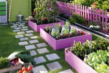 Garden ideas / by Effie Blasini, LMT - Starseed