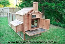 The Backyard Chicken Coops Penthouse / Welcome to our deluxe model chicken coop; The Penthouse. This coop is designed to house up to 8 hens full time with maximum comfort and safety. / by Backyard Chicken Coops