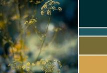 Color Combos / by Stacy Hartless