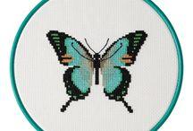 Butterfly Bright, Sherborne, Dorset