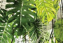 Rainforest painting inspirations