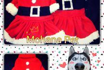 Chritmas Designs / Clothing Dog