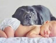 Bebés divinos