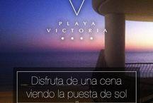 Cádiz / Todo lo que puedes hacer en tu visita a Cadiz, la agenda de la ciudad, fiestas y ferias, eventos...