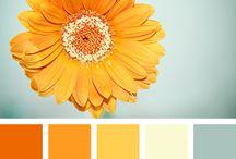 palet warna Lia