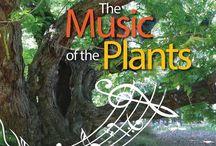 Sound of Plants