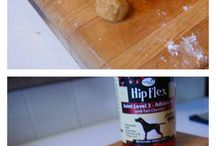 Homemade Pet Treats