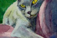 gatto ( amore mio )