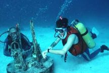 Homeschool Marine Biology