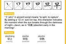 Languages and Scripts