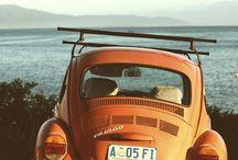 Car lover :)))