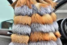 New collection saga fox - wwwfurs-outlet.com