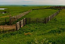 Picture Perfect Prairie / From the Flint Hills and vast open fields to rolling hills and picturesque rural communities, as Kansans, we are proud to be part of this Great Plains state. Showcase the breathtaking beauty of working and being a part of Kansas agriculture.
