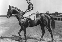 Vintage Thoroughbred Images