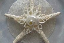 Christmas Shells decoration s