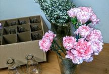Carnations & Gypsophyla Arrangements
