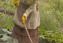 Harvest / Sklizeň