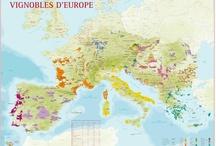 Géographie & Vins