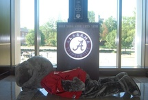 Roll Tide! / by Susan Sims