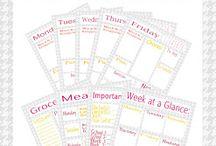 organization / by Michelle