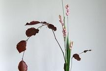 Ikebana wouter