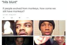 blunt hits