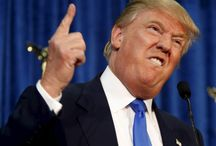 Trump's Plan to Drain Infrastructure Swamp