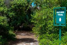 Boca Raton / Things to do in Boca Raton