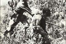 JAPAN WAR CRIMES
