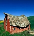 Barns and buildings / by Becky Wilson