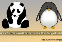 Latest Update from Panda and Penguin
