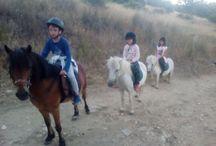 Rutas a caballo y/o ponys para niños