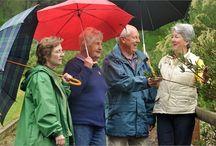 Ageing Positively Festival 2015