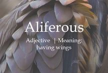 My word of the year 2018: Aliferous