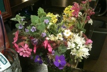 Flower inspiration / by Izzie Waterman