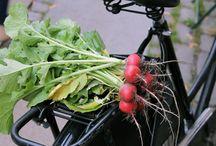 Urban Gardening / Urbant havebrug