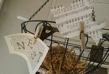 birdcage & freedom / by Aimee Larsen