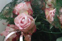 Oud rose