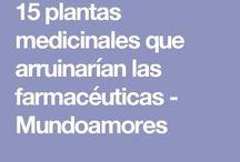 PLANTAS NATURMEDICINALES