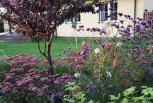 ogród w Kretominie / ogród zaprojektowany przez Przedsiębiorstwo Romantycznych Zagajników