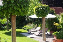 Kies im Garten