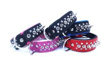 One Spike Two Studs Leather Dog Collar