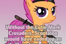 those ponies are terrorists