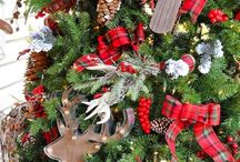Christmas Tree ideas / by Candace Fisher