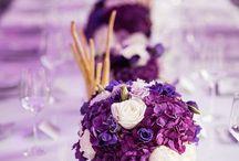 Ultra Violet in Parties