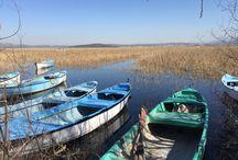 Gölyazı / Bursa